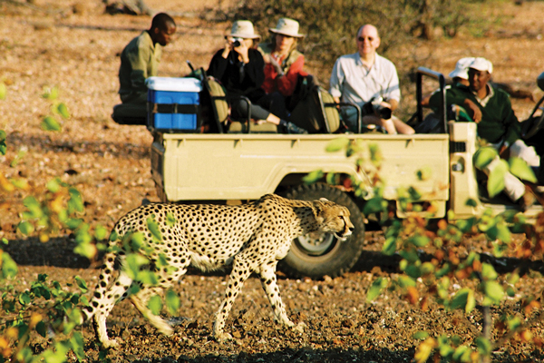 African Travel Inc: Thrilling Adventure in Southern Africa