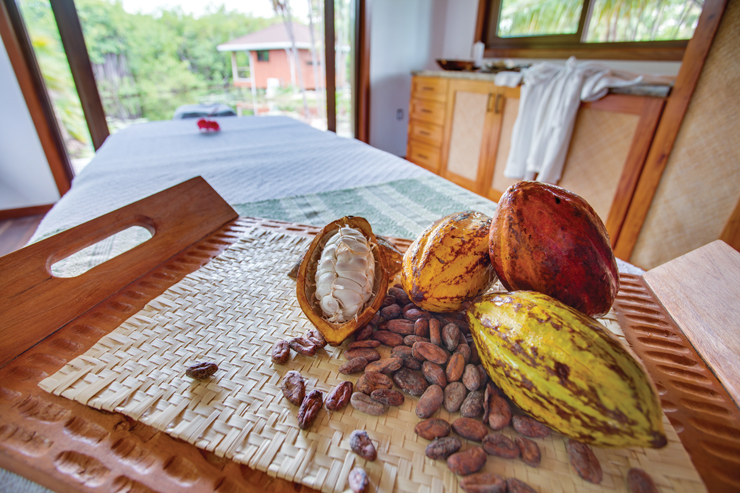 Experience Chocolate Like Never Before In Belize
